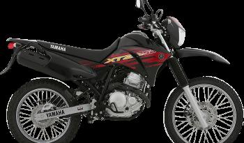 XTZ 250 full