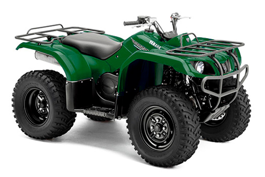 GRIZZLY 350